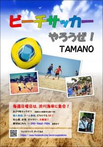 『ビーチサッカーやろうぜ!TAMANO』2014年度 ポスター